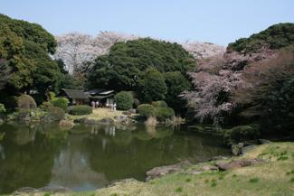 TOKYO - I PARCHI E I GIARDINI DELLA CITTÀ